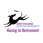 Greyhound Adoption Program SA